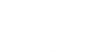 Logo Danse Attitudes