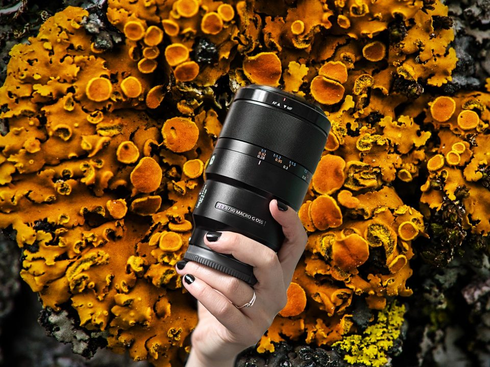 Sony 90mm f/2.8 Macro lens